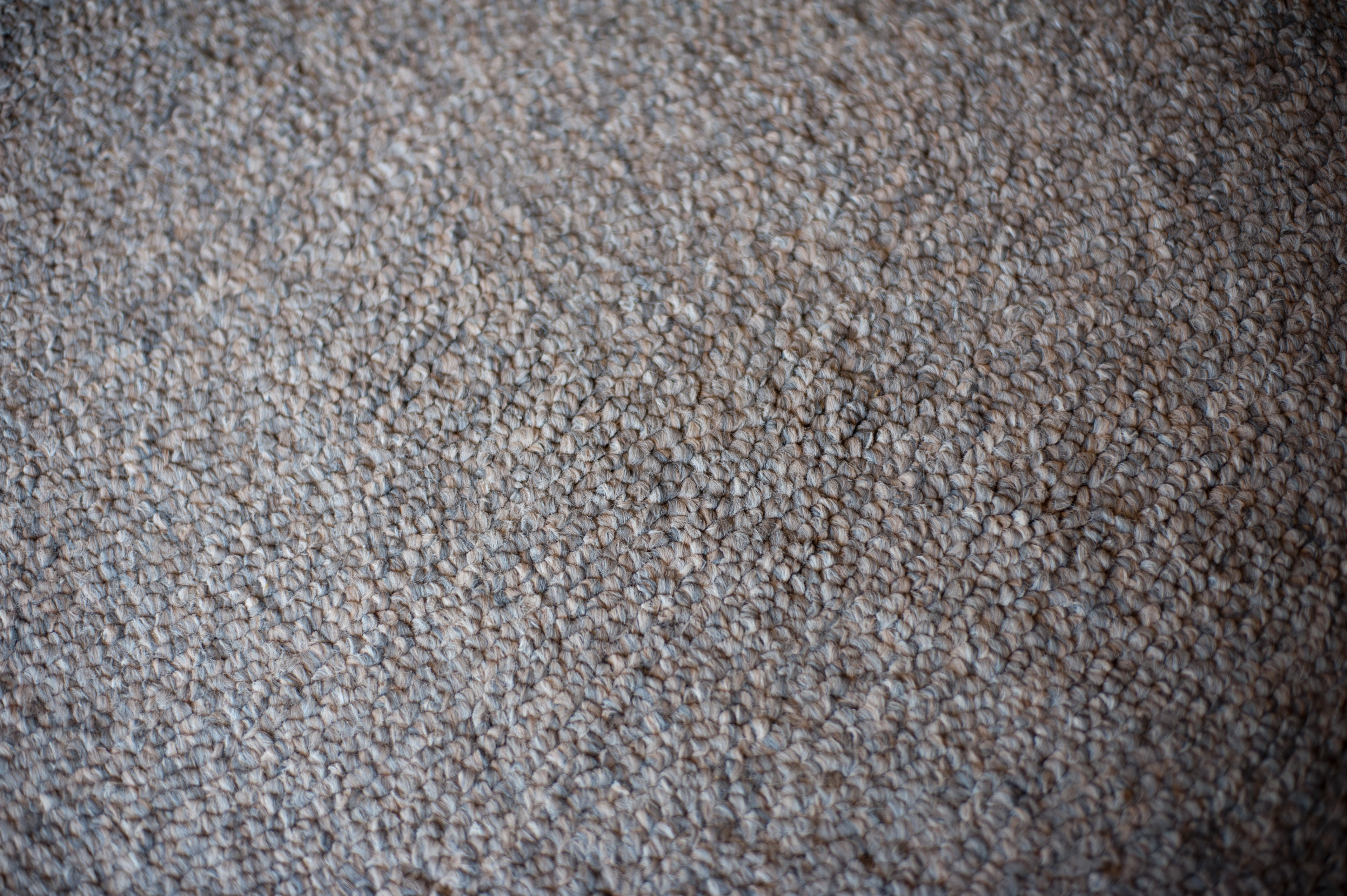 Close up Clean Textured Gray Wool Carpet for Wallpaper Backgrounds, Emphasizing Copy Space on a High Angle Shot.