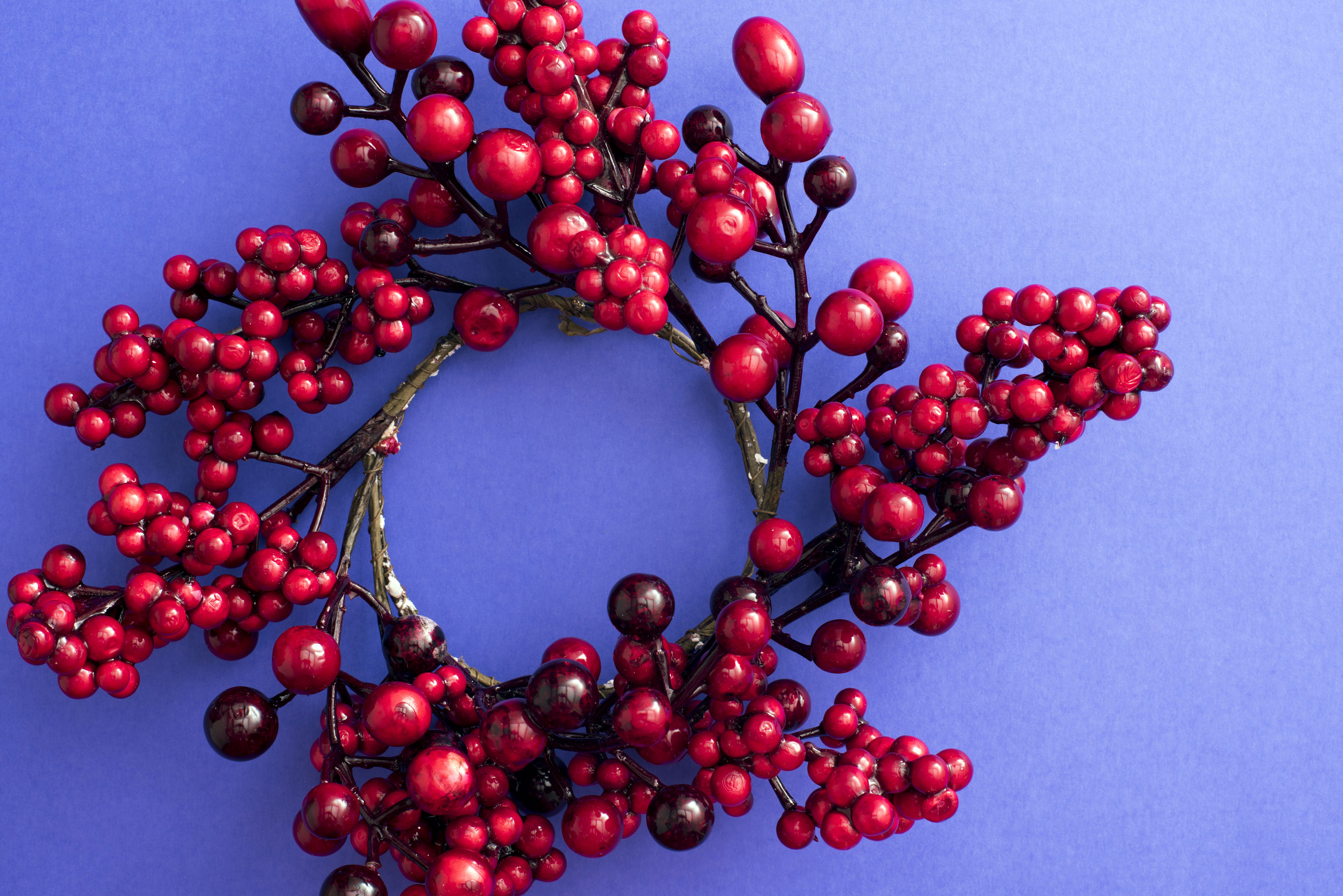 Traditional circular red berry Christmas wreath decoration over a colorful purple blue background with copy space for your holiday greeting