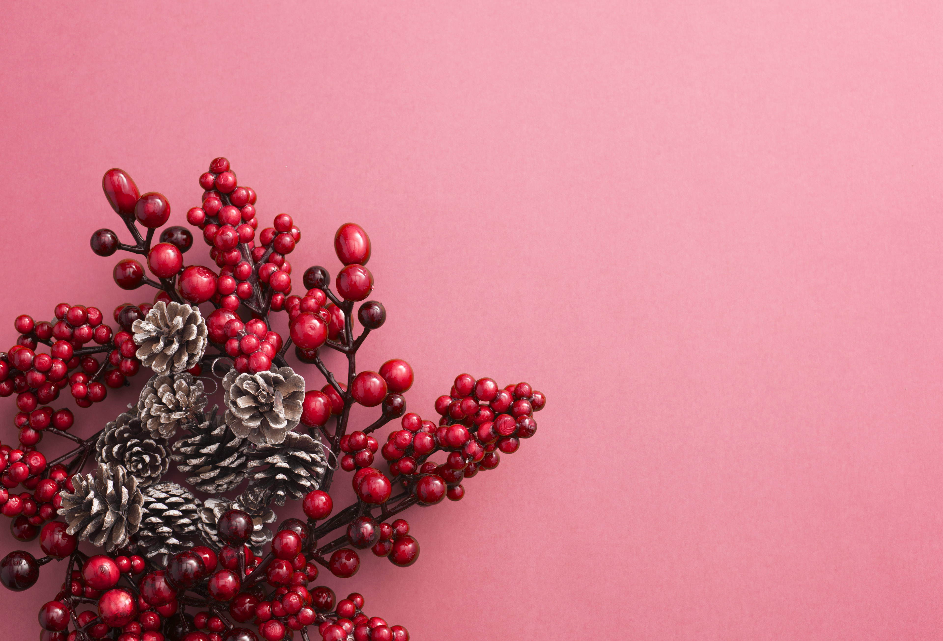 A decorative red berry Christmas wreath with frosted pine cones isolated on a plain pink background with copy space.