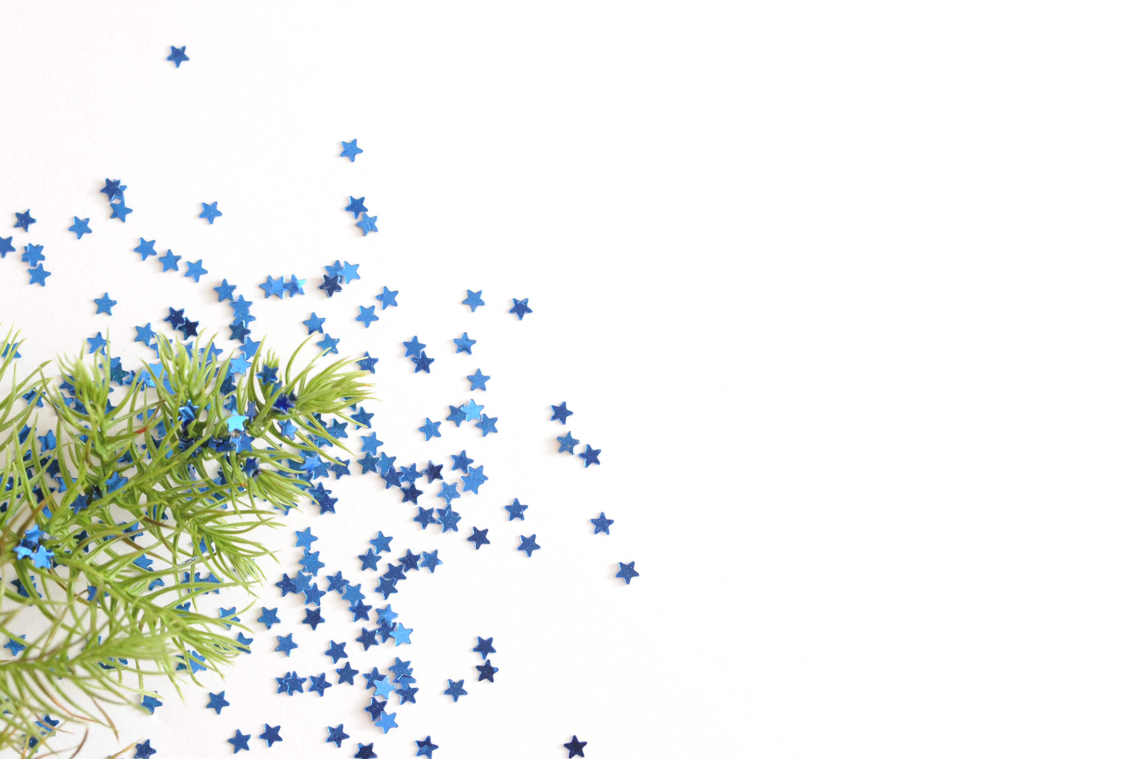 image of evergreen sprig and blue star confetti on white | freebie