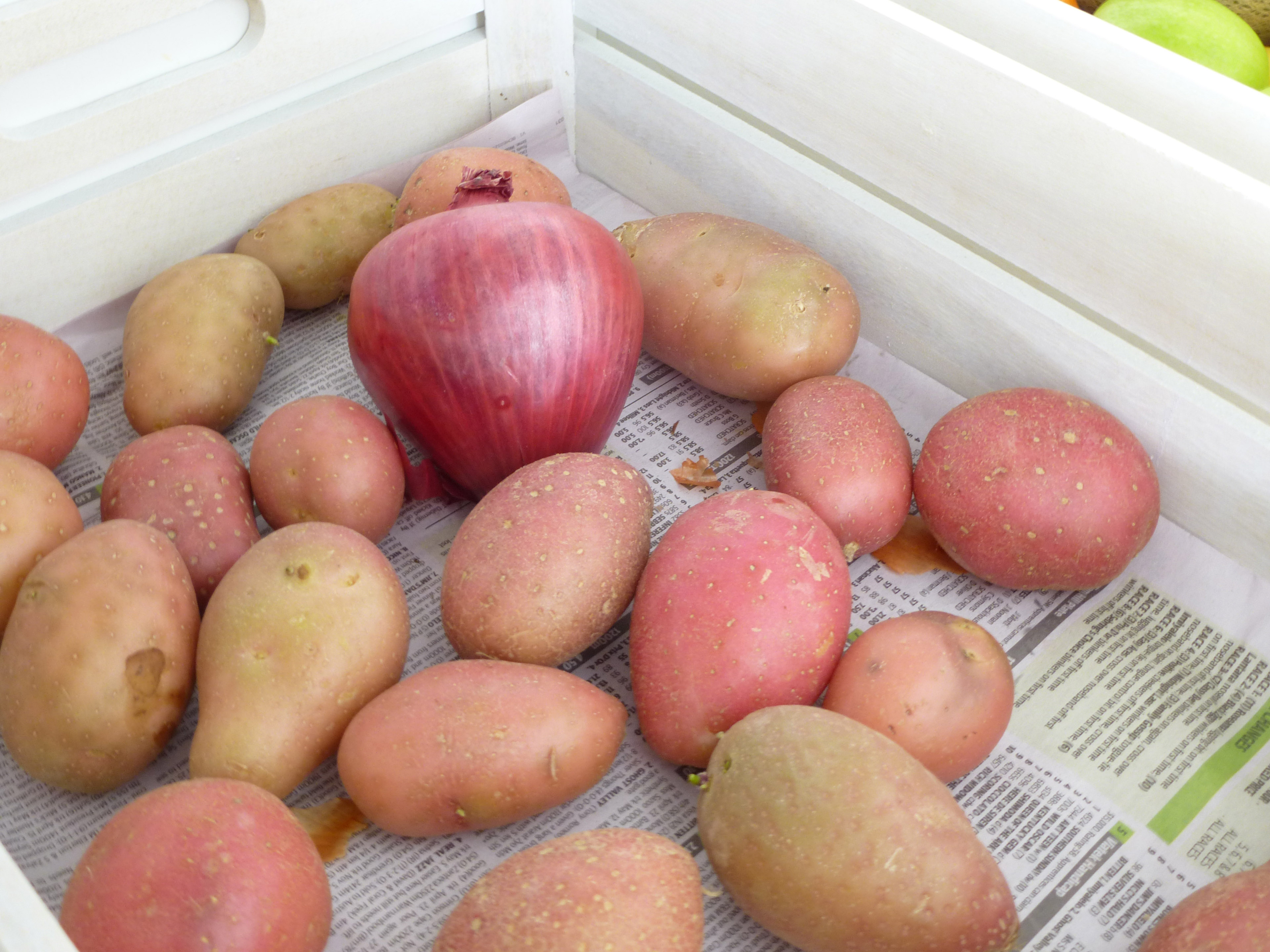Dozen potatoes with one onion lying in wooden crate