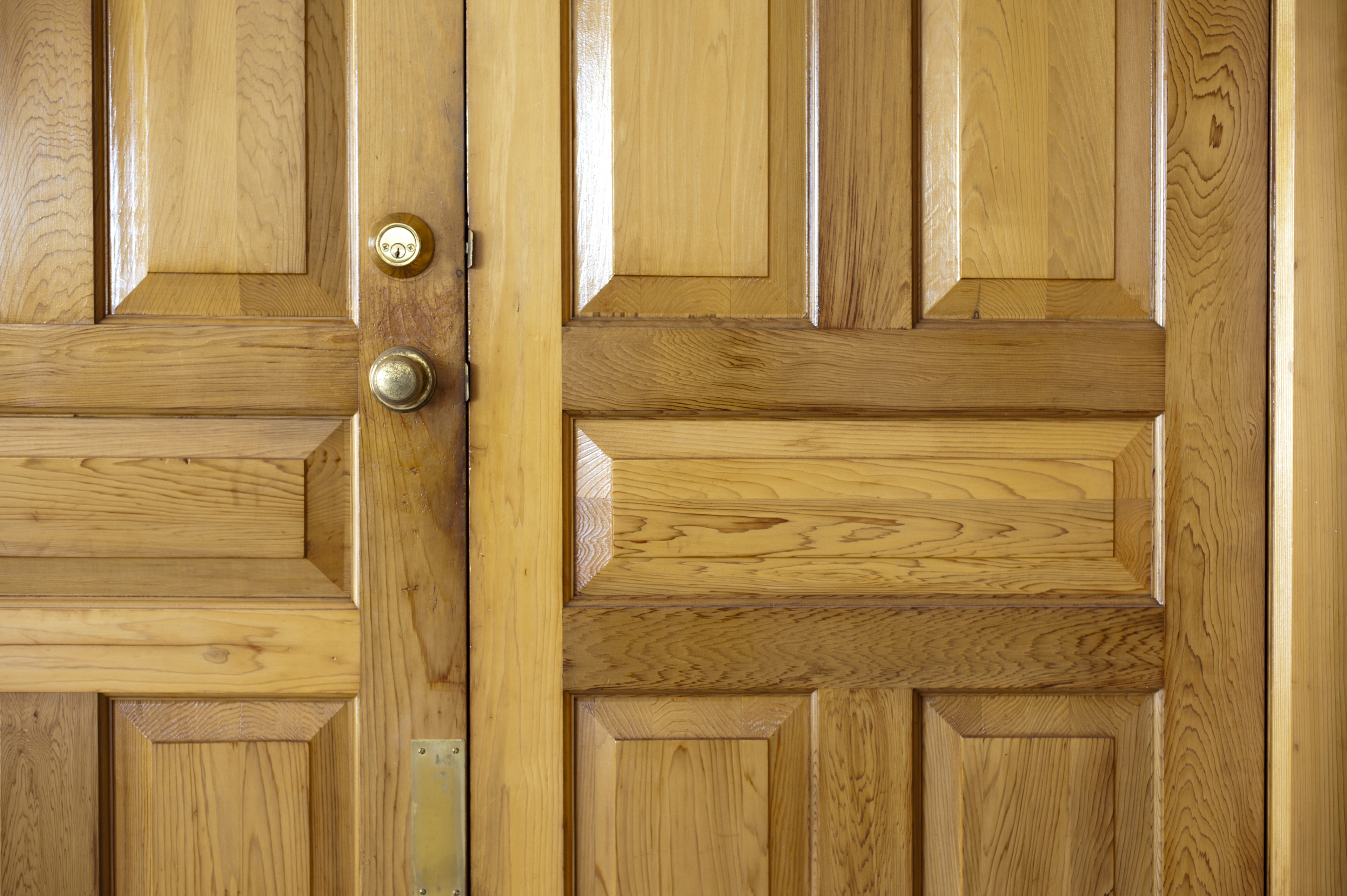 Image of natural wood double front doors to a home for Natural wood front door