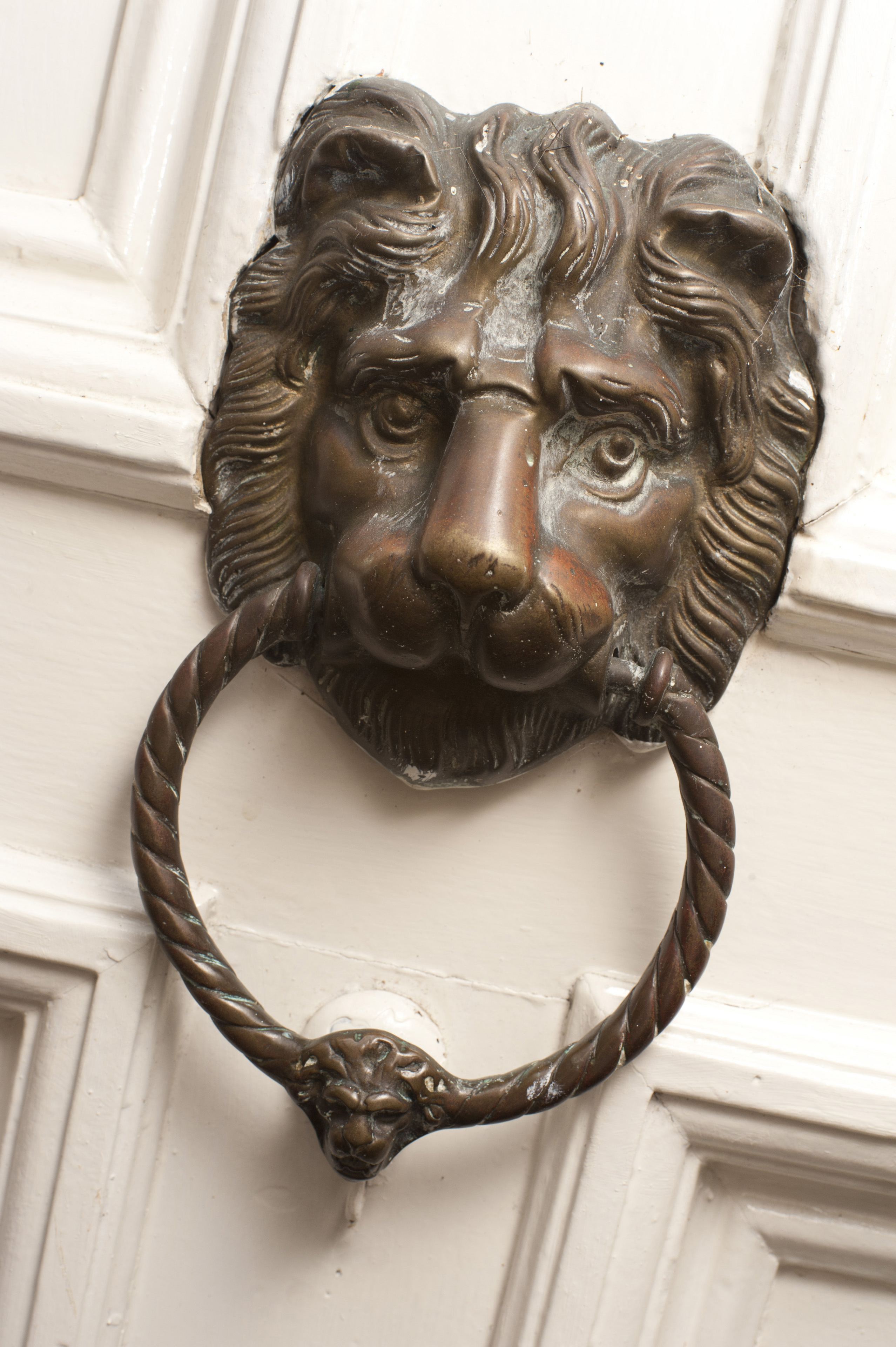 Brass door knocker of a lions head with a ring in its mouth for banging in & Image of Brass door knocker of a lions head | Freebie.Photography