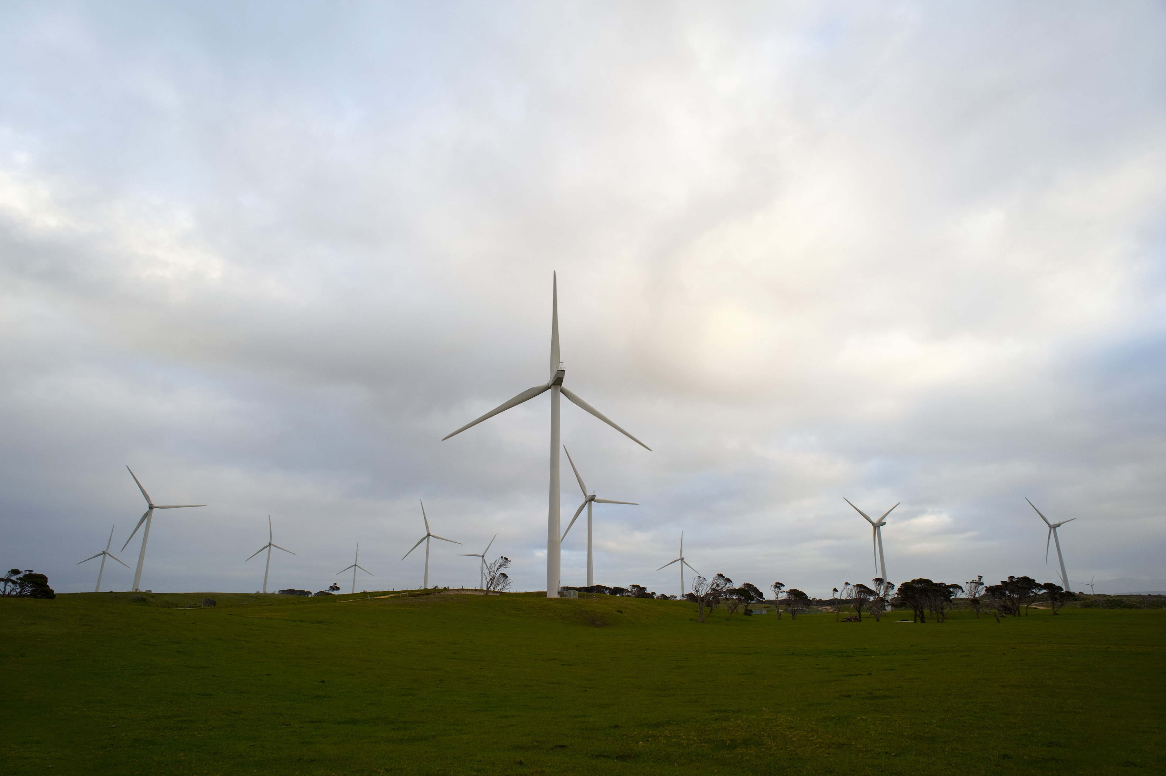 Wind farm with multiple wind turbines generating renewable alternative energy from the conversion of the kinetic energy of the wind to electricity