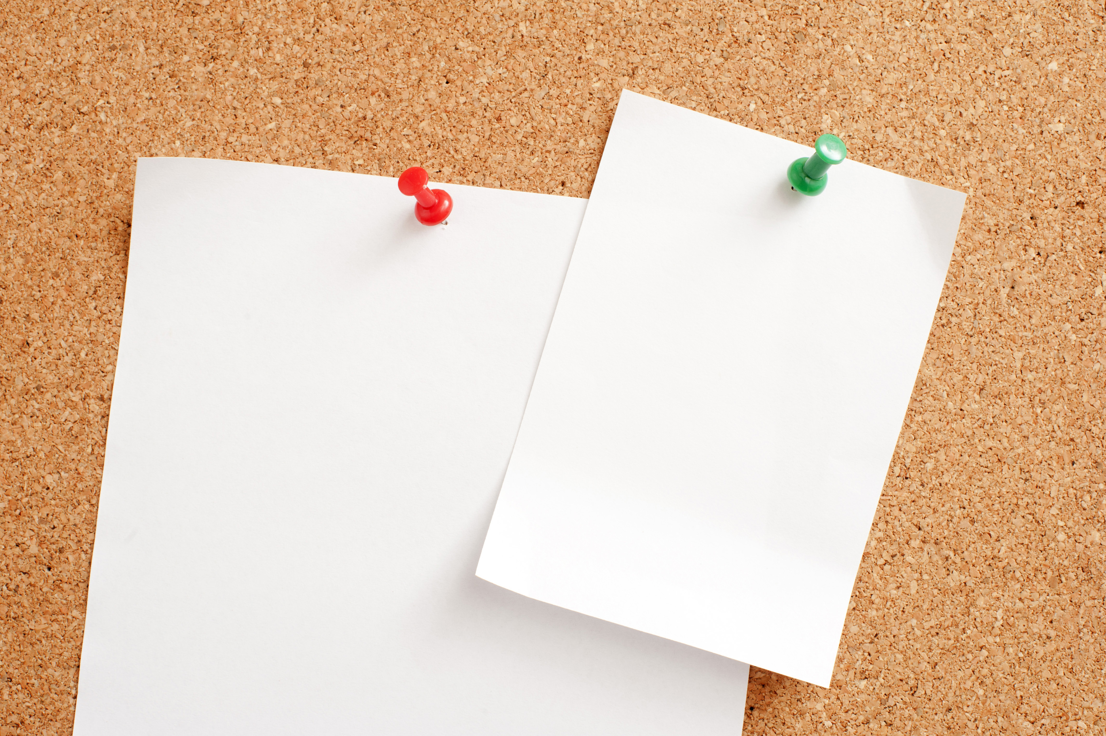 Two Blank White Notice Papers Pinned on Brown Cork Board, Emphasizing Copy Space.