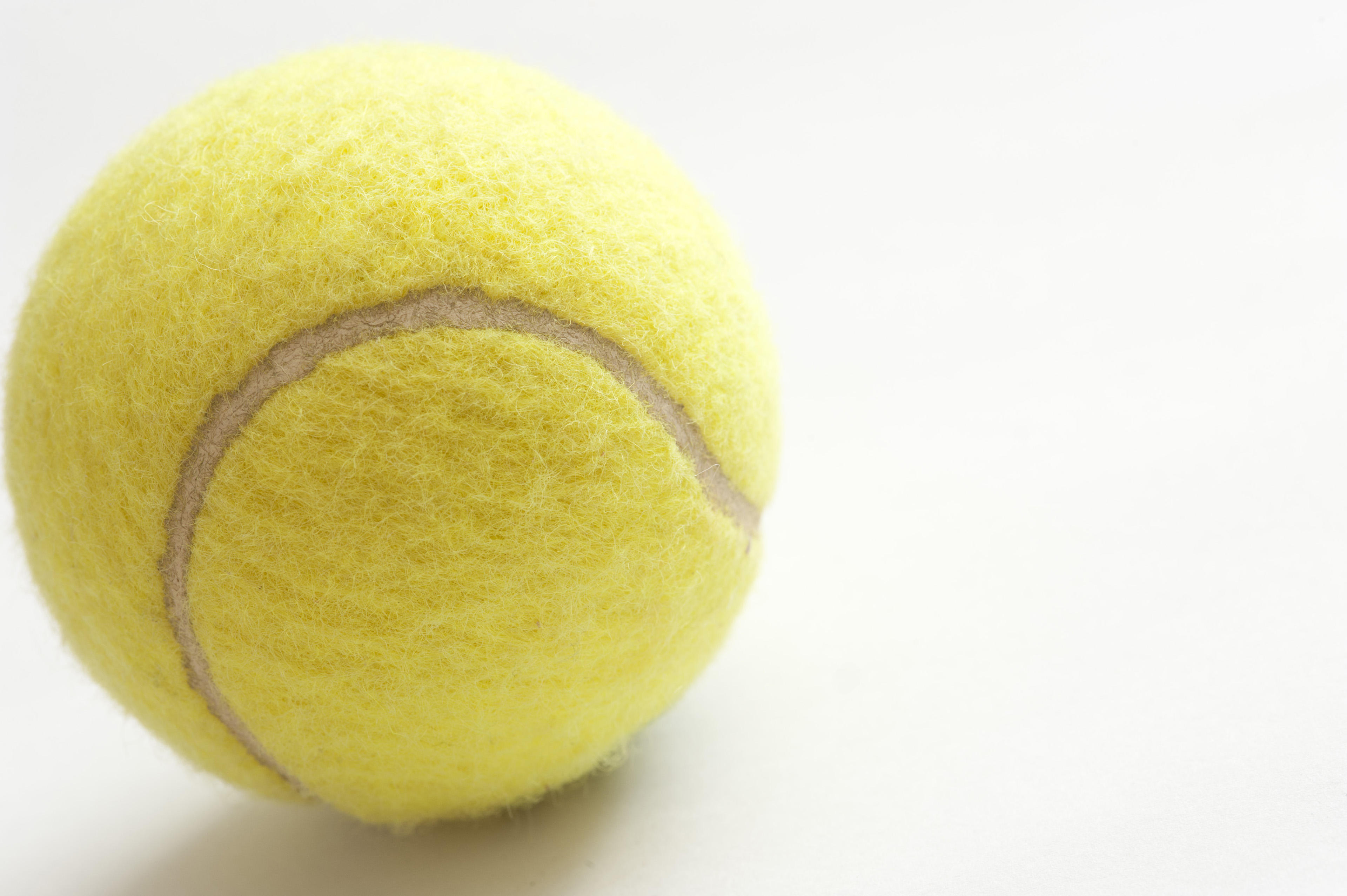 27ed6a5e32d7 Close Up of Yellow Tennis Ball Showing Texture on White Background with  Copyspace on Right Side