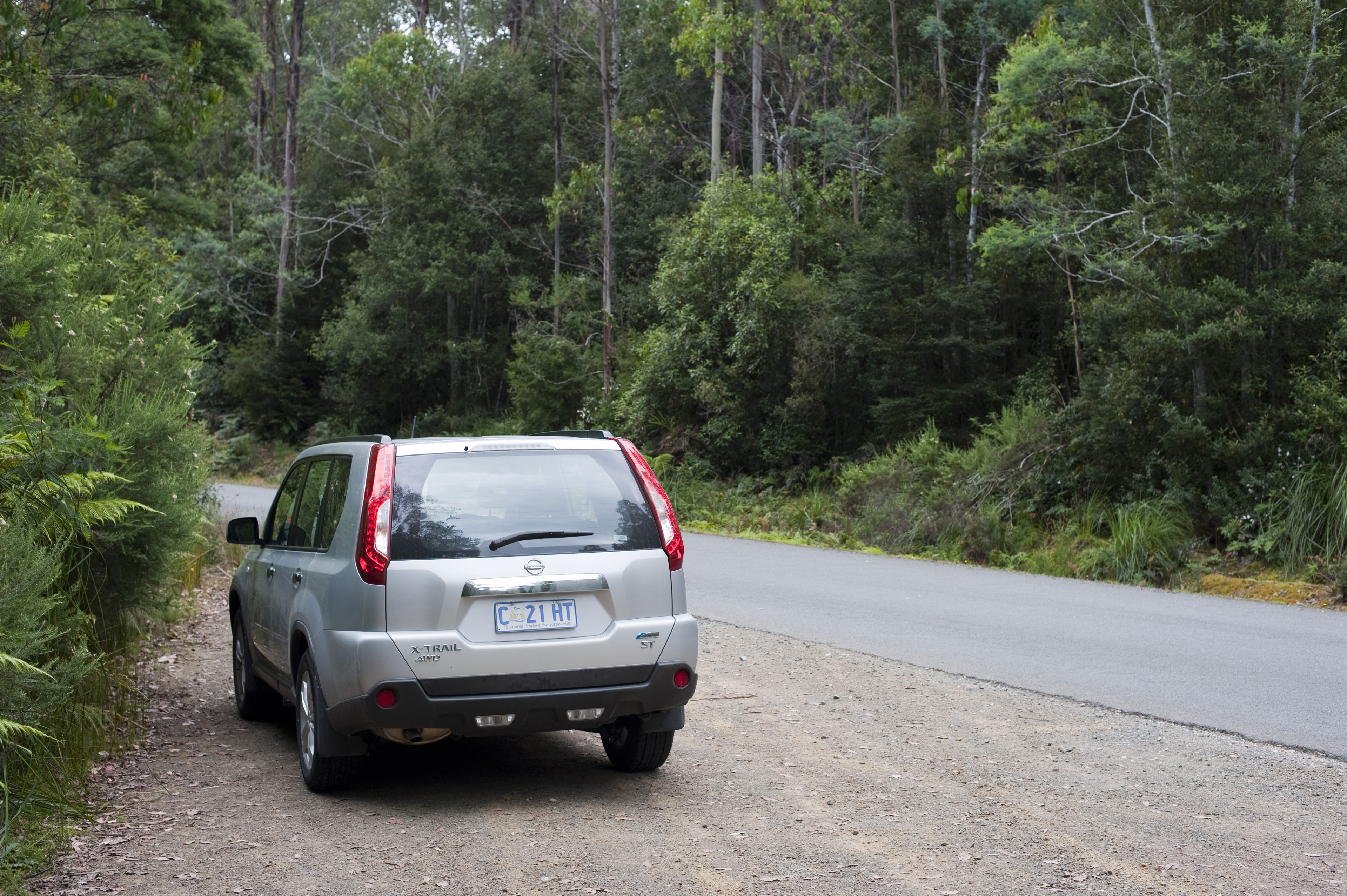 Hatchback car parked on the gravel at the side of the road in a wooded area of lush green trees, back view