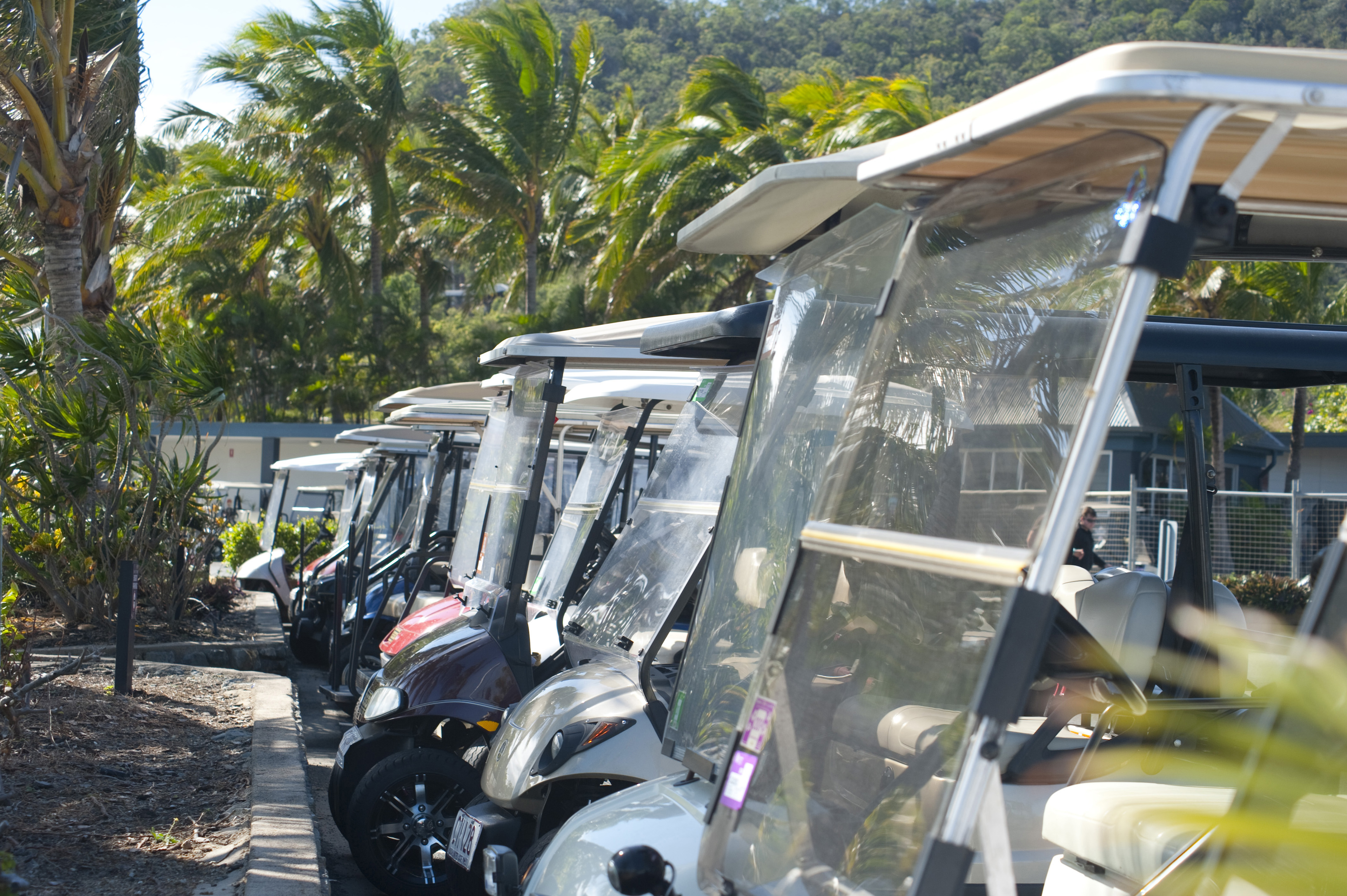 Line of golf carts parked outside a club house on a golf course with leafy green trees